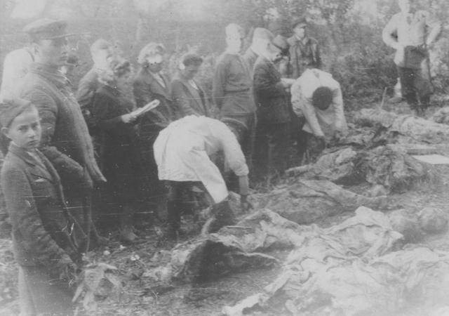 massacre, exécution... Einsatz_fosse_zloczow