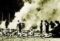 Les cadavres brûlés.