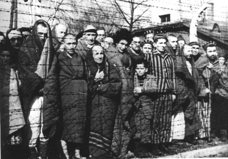Déportés libérés, Auschwitz, 1945